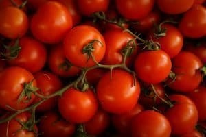a bunch of bright red tomatoes