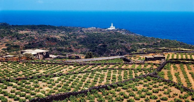 a view of Pantelleria
