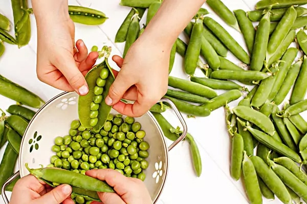 Peas for frittella