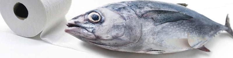 Tinned tuna and toiletpaper