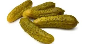 a plain gherkin can be kinky