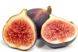 a fig tree has no apparent blossom, the flowers grow within