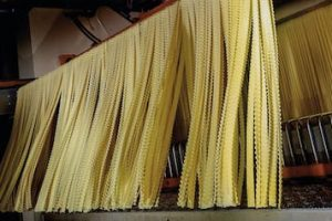 making pasta on industrial scale