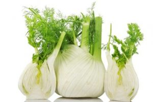 fun with fennel