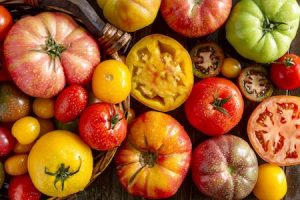 toothsome tomatoes