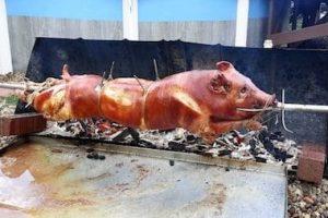 roasted pig piglet